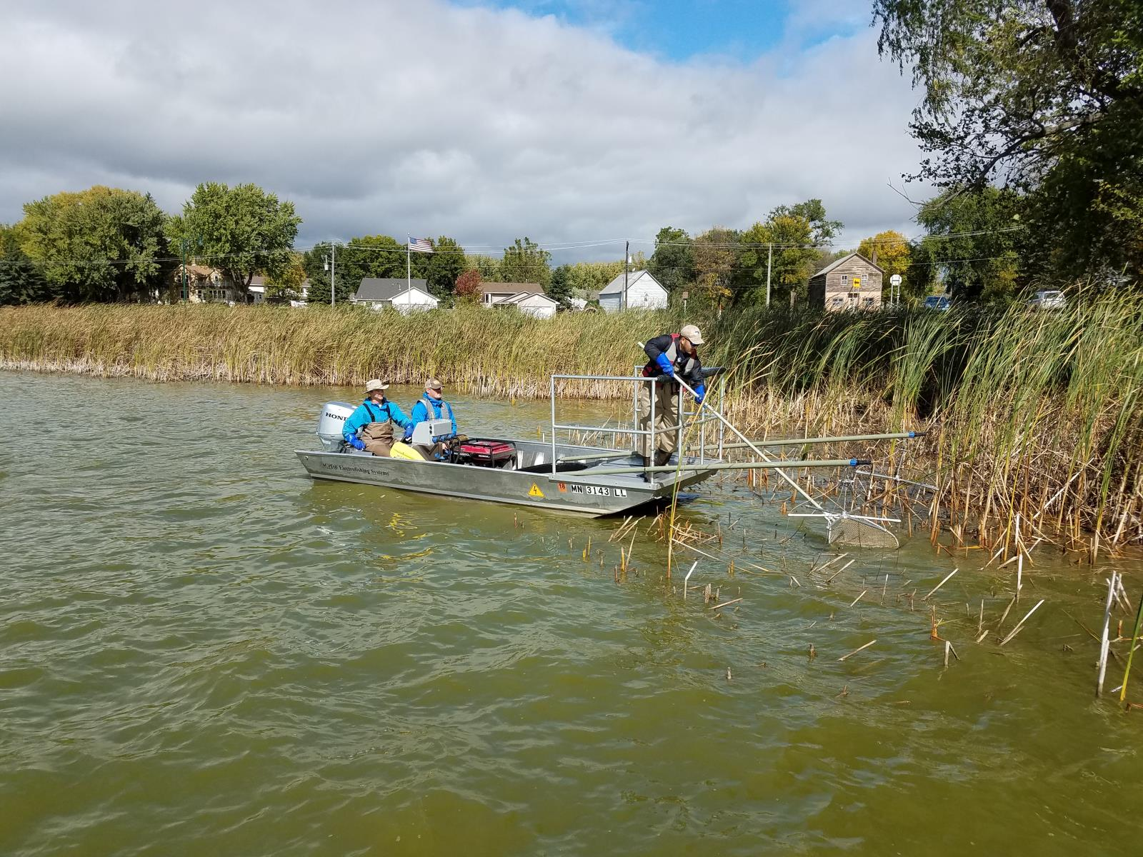 Benton Lake Carp Removal | Carver County, MN
