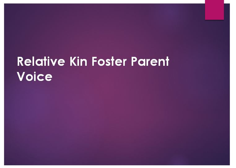 Foster Parent Voice