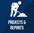 Projects & Reports