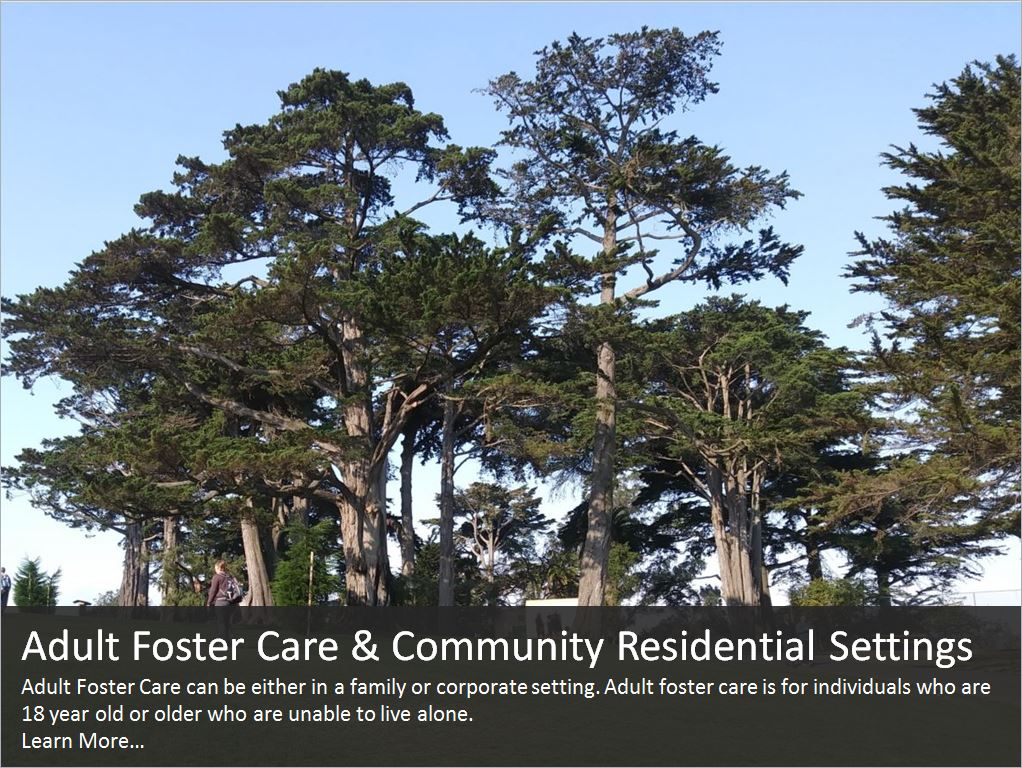 Adult Foster Care - Trees