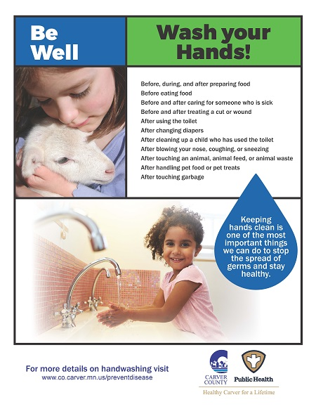 CCPH Wash Your Hands Poster - Girl-Sheep